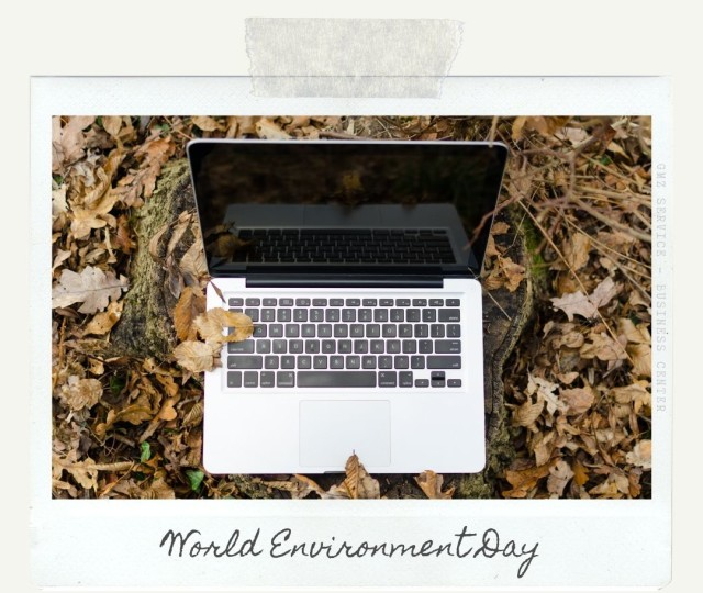 gmz-service-world-environment-day